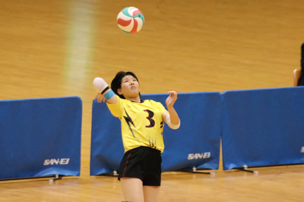 H30_volley04