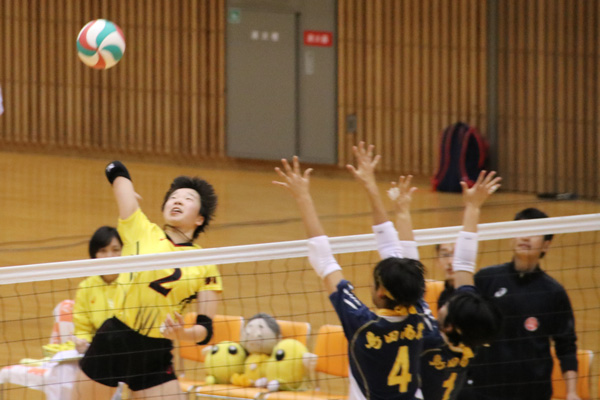 H30_volley05